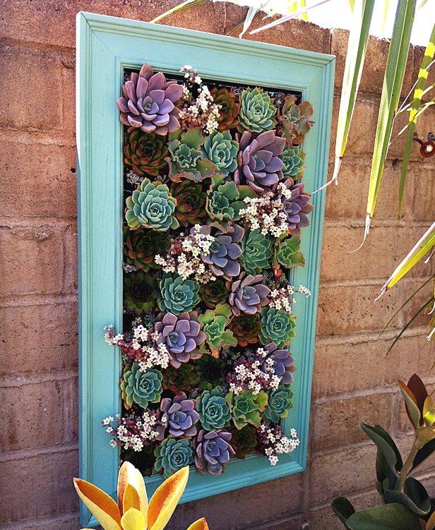 Repurpose old picture frames - succulent planter